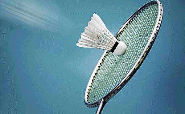 公司羽毛球赛